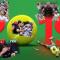 Grande almanacco sportivo: il tennis del 2019